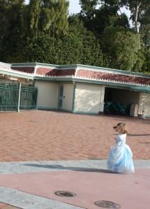 Dressed as Cinderella at Disneyland