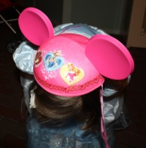 Disneyland Mouse Ears hat